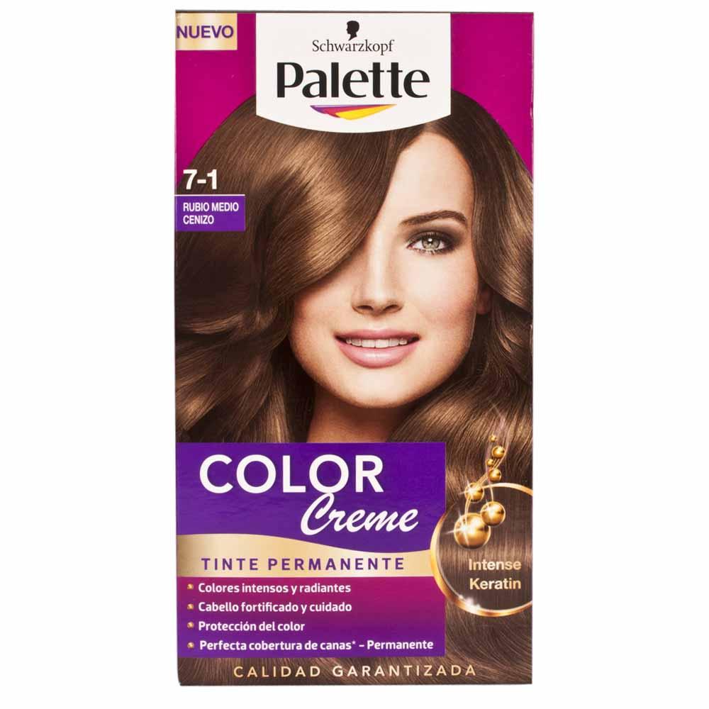 Tinte para cabello en cenizo - Bano de color o tinte ...