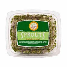 germinado-age-sprouts-de-brocoli-bandeja-100g