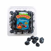 blueberries-la-florencia-kg