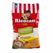 alimentos-mascotas-rintisa-ricocan-con-omega-3-y-6-bolsa-1kg