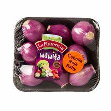 cebolla-roja-bb-wawita-kg