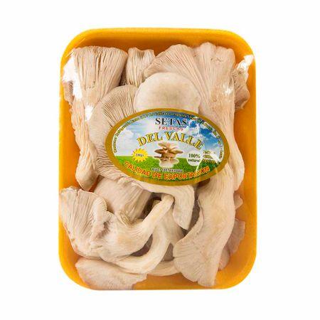 champiñones-hongos-kg
