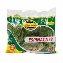 espinaca-bb-linea-verde-kg