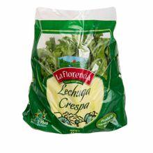 lechuga-la-florencia-crespa-hidroponica-kg