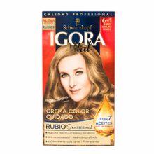 igora-vital-tin-6-1-rub-osc-cen-un1un