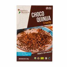 america-org-crunchy-choco-quinua-cj260gr
