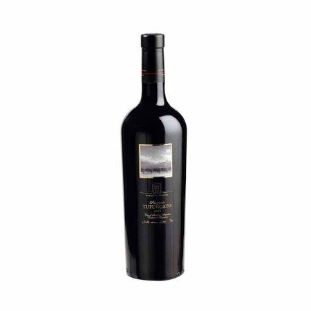 Vino-tinto-FINCA-FLICHMAN-PAISAJE-DE-TUPUNGATO-Botella-750ml