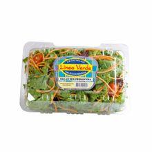 ensalada-linea-verde-mix-primavera-bolsa-200g