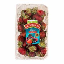 fresas-la-florencia-premium-bandeja-500gr
