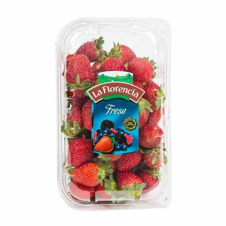 fresa-la-florencia-kg