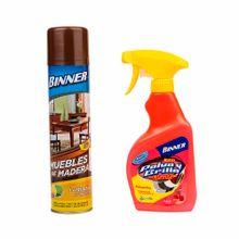 limpiador-para-alfombras-y-muebles-binner-pack-2-un