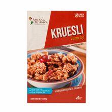 america-org-crunchy-kruesli-cj260gr