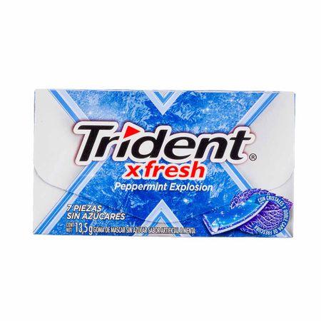 goma-demascar-trident-xfresh-peppermint-caja-13-5g