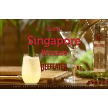 singapore-breazze