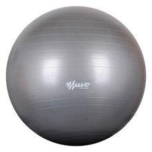 pelota-gym-65cm1100g