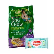 http---www.plazavea.com.pe-comida-dog-chow-cachorros-razas-pequenas-3kg-toallitas-huggies-one-done-48un-p