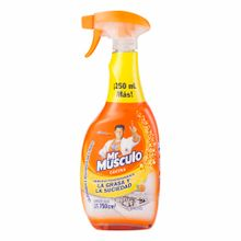 desinfectante-de-cocina-mr-musculo-botella-750ml