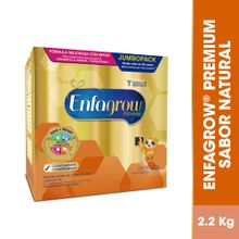 formula-infantil-enfagrow-premium-mfgm-plain-lata-2.2kg