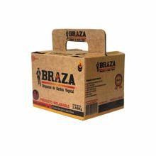 carbon-en-briquetas-braza-paquete-2kg