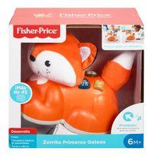 zorrito-primeros-gateos-ghx78-fisher-pri