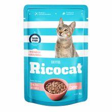comida-para-gatos-ricocat-trocitos-de-carne-en-salsa-para-gatitos-pouch-100g