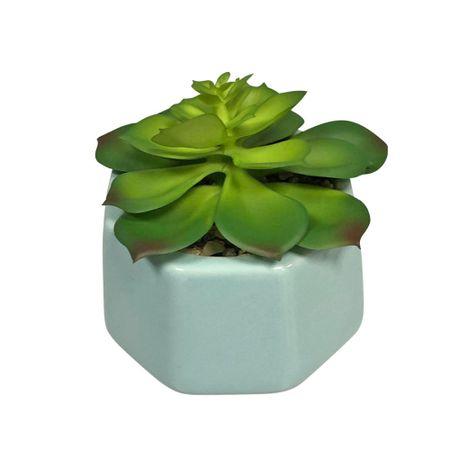 maceta-con-planta-deco-home-celeste-california