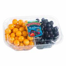 mix-de-berries-la-florencia-aguaymanto-y-blueberries-bandeja-300g