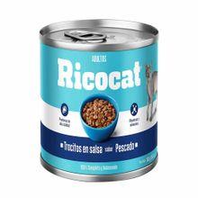 comida-para-gatos-ricocat-trocitos-pescado-lata-160g