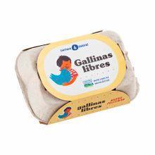 huevos-gallinas-libres-bandeja-6un