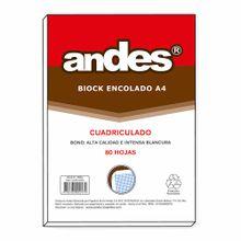 block-encolado-andes-a4-cuadriculado-80-hojas