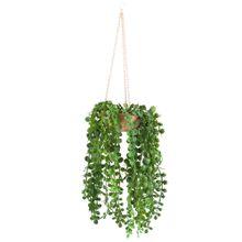 planta-colgante-de-plastico-viva-home-tropical-velvet