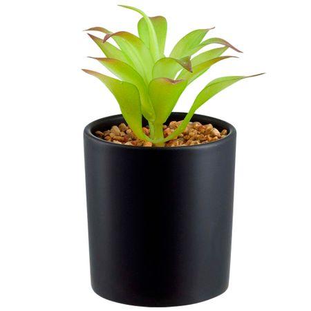 maceta-con-planta-deco-home-negra-lisa-coleccion-etniko